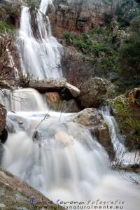 cascata di cannas