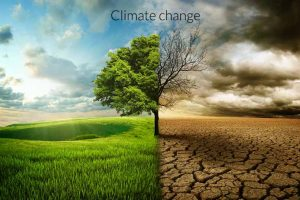 what-is-climate-change1