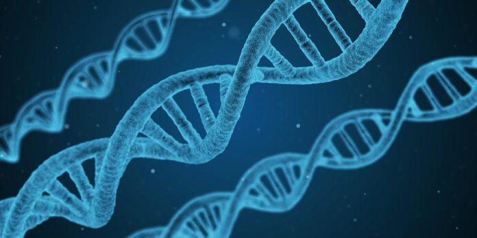 Festival della scienza a Carbonia, immagine elica DNA.