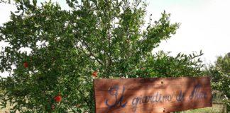 Albeschida - Il giardino di Alice
